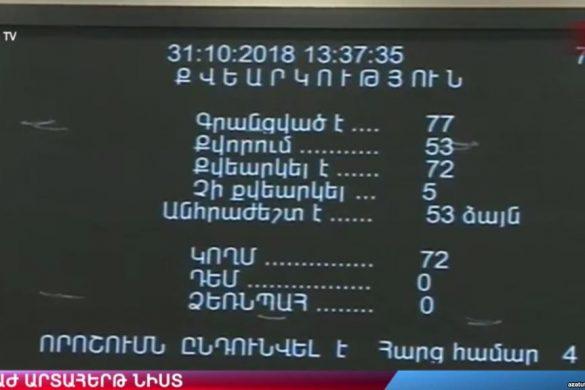 amnesty vote