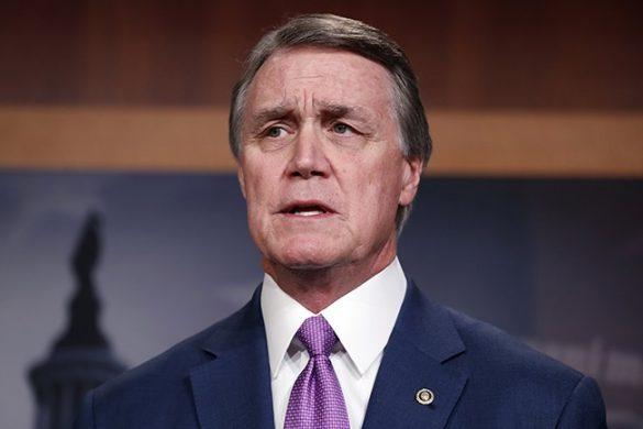senator perdue