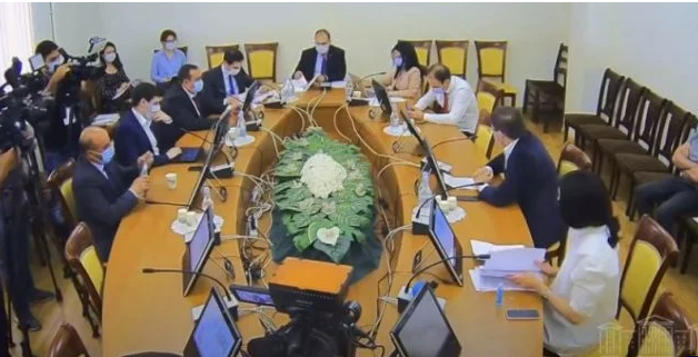 parliament committee