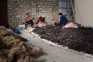 Flora-Rima-and-Aveta-Clean-Raw-Wool-Before-Processing