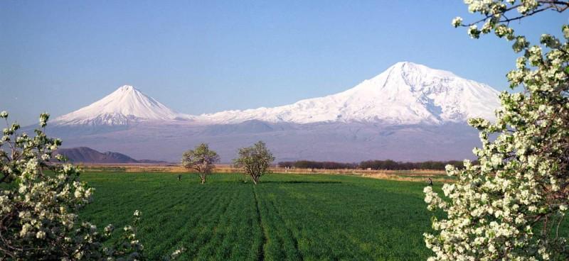 ararat-valley